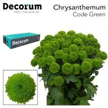 Chr Code Green