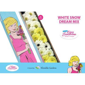 GE MI MIXED WHITE SNOW DREAM