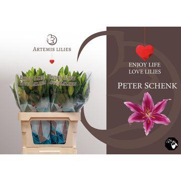 Peter Schenk 90 cm 3+