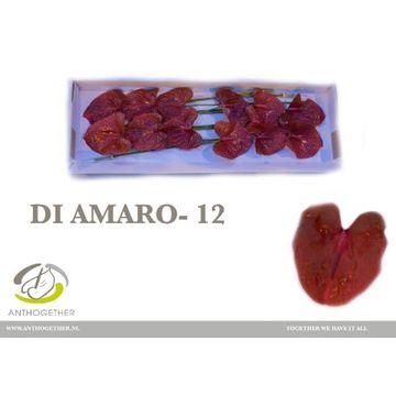 ANTH A DI AMARO 12.